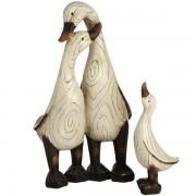 Household - Indian Runner - Quackers Family