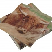 Napkin - Highland Cow (1)