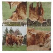 Napkin - Highland Cow (2)