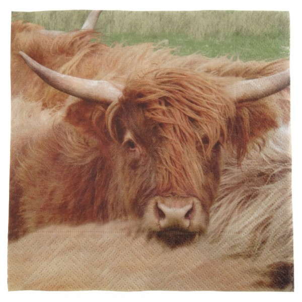 Napkins - Highland Cow 1