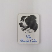 Border Collie - Magnet