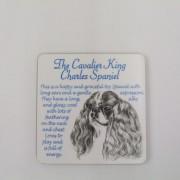 Cavalier King Charles - Coaster
