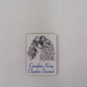 Cavalier King Charles - Magnet
