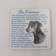 Doberman - Coaster
