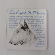 English Bull Terrier - Coaster
