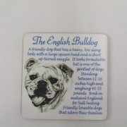 English Bulldog - Coaster