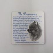 Pomeranian - Coaster