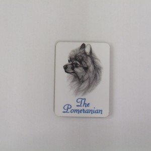 Pomeranian - Magnet