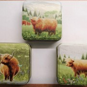 Coo Family - Small Set of 3