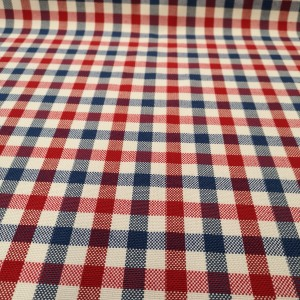 Misc - Gingham Check - Red^Blue