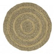 Seagrass Circle - Seychelles